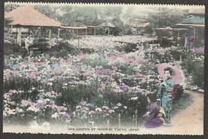 Postcard Japan the Iris Garden at Horikiri Tokyo antique view