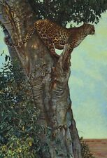 LEOPARD ART PRINT - On the Lookout by Kalon Baughan 40x28 Cat Tree Hunt Poster