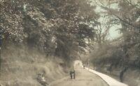 Bexhill chantry lane 1905 dainty series