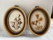 Vintage Framed Pressed Flowers