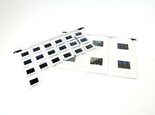 100 + 100 free clear pages for filing cabinet slides transparencies coins badges