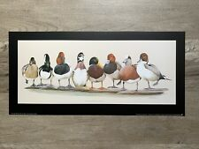 "Harry Antis Windriders Duck print Image size 12/"" x 16/"""