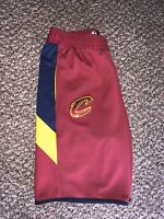Nike NBA Cleveland Cavs Therma Flex Performance Shorts Men's L Rare! Team Issued