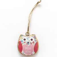 "New Shabby Chic Rustic Metal Spring Owl ""Special Friend"" Hanging Decoration NOP"