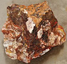 Mexican Crazy Lace Agate 11 pounds 1 ounces Lapidary Slabbing Cabbing Tumbling