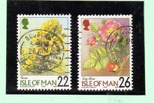 Man Flores valores del año 1999 (AY-90)