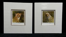 Tigre et Lion Lionceaux Signé par David Shepherd, Limited Edition Prints