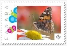 uq. BUTTERFLY on Daisy = Insects= Picture Postage MNH-VF Canada 2019 [p19-01s27]