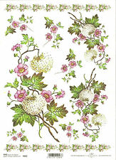 Rice Paper for Decoupage Scrapbooking, White Pink Flowers ITD R682