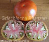 🔥 🍅 COFFEE STRIPES Tomate*Tomaten für kurze Sommer*10 Samen