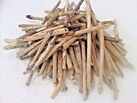 DRIFTWOOD 75 QUALITY STICK PIECES  ARTS AND CRAFTS DISPLAYS ETC