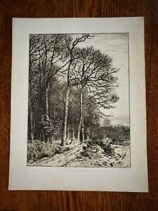 1850 French Etching 'Lisière du Bois' by Charles Jacque