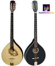 Irish Bouzouki, Solid Wood, made by HORA, Romania + D'Addario J81 Strings