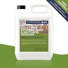 Stonecare4u Efflorescence & Salts Acid Remover 5L-Cleans Wall Paving Brickwork