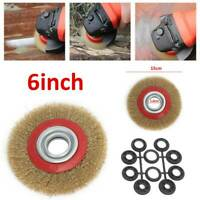 "Wire Wheel Grinder Bench Grinding Grinder 6"" Wire Brush Fine With 10pc Reducers"