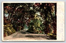 8662 On the West River Road, Brattleboro, Vermont Color Postcard, Windham County