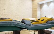 Bio-Resonanz System, elektr. Massageliege, NEU, ähnl. HHP Andulationssystem