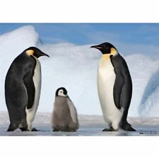 Jumbo Planet Earth - Penguins Jigsaw Puzzle (150 Pieces)