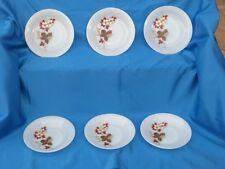 Lot de 6 assiettes creuses ARCOPAL, motif automnal, vintage, 70's