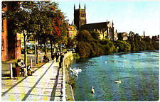 Unused Postcard Worcester Cathedral, From River Severn
