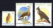 Philippinen 2009 vögel neu 1. auswahl