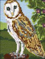 Owl :  Anchor  Tapestry  Kit : Starter : MR925