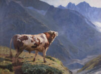 """perfect 36x24 oil painting handpainted on canvas """"Bull in the Alps""""@N15571"""