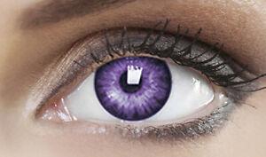 Farbige Lila Kontaktlinsen Karneval Fasching Halloween - FOXY VIOLET - PLANO