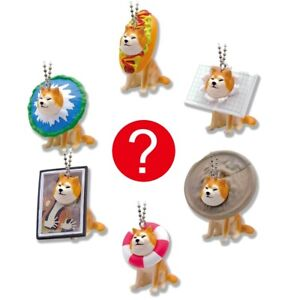Japanese Blind Box Toy Shiba Inu Wall Dog Meme Keychain Figure 1 Random Charm