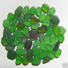Genuine Nova Scotia Beach Sea Glass - 50 Jewelry Quality - Green
