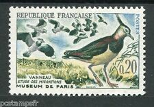 FRANCE, 1960, timbre 1273, OISEAUX, VANNEAUX, neuf**