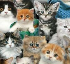 3/4 Yard Length Cat Breeds 3809-Multi by Keith Kimberlin for Elizabeth's Studio