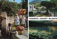 Vintage Postcard TENERIFE, CANARY ISLANDS, SPAIN National Costume  (1400)