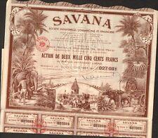 TOP DECO => SAVANA (BORDEAUX PONDICHÉRY INDE) (L)