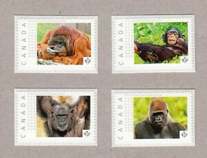 MONKEY = Set of 4 Picture Postage MNH stamps Canada 2016 [p16/02mk4]