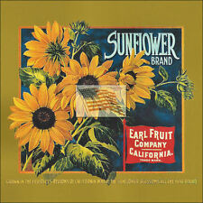 REPRINT PICTURE of older fruit crate label SUNFLOWER BRAND EARL FRUIT 6x6