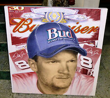 Famous Pop Art DALE EARNHARDT JR by Steve Kaufman SAK
