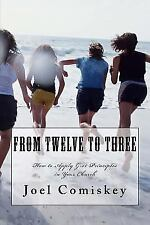 From Twelve to Three: How to Apply G-12 Principles in Your Church (Paperback or