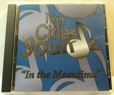 Twin Cities Soundz: In the Meantime (Aleatoric, 2006) (cd6903)