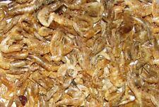 Shrimps Jumbo Garnelen 2-4 cm 180 gr/1L FIF