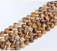 Natural Picture Jasper Gemstone Round Beads 16'' 4mm 6mm 8mm 10mm 12mm