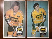 1973-74 O Pee Chee WHA Hockey Poster - Chicago Cougars
