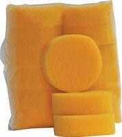 Tack Sponges - 12 Pack