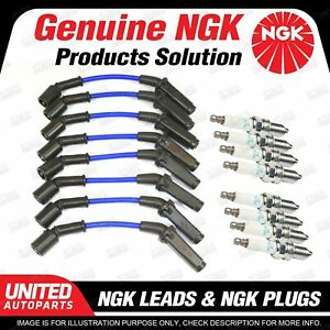 8 x NGK Spark Plugs + Ignition Leads Set for Holden Calais VE Caprice WL WM WN