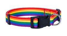 Native Pup Rainbow Flag Dog Collar (Large)