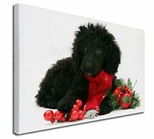 """Christmas Poodle 30""""x20"""" Wall Art Canvas, Extra Large Picture Pri, AD-POD3-C3020"""
