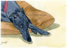 LARGE DOG 7197 GREYHOUND WHIPPET LURCHER DIANNE HEAP DOGS BED PAINTING PRINT ART