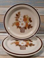 """2 Stoneware Dinner Plates Japan Vtg floral 10 1/8"""" flower basket dishes brown"""