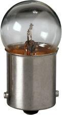 License Light Bulb Standard Lamp License Plate Light Bulb Eiko 67