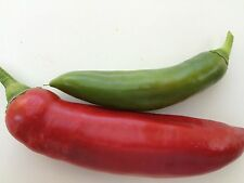 HOT CHILLI PEPPER ANAHEIM  275 FINEST SEEDS